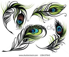 simple peacock feather vector - Google Search