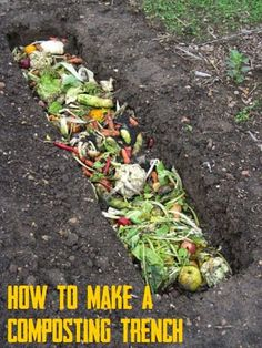 What is Trench Composting #Organic_Gardening