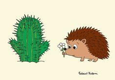 Cactus and porcupine by Federico Monzani