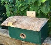 Roosting Box-Green with Pine Roof