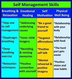 Self management skills comprise the second component of emotional intelligence. Your self is your vehicle for life, and managing your self is like managing your motor vehicle for safe journey to your destination.