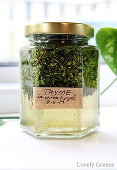 DIY Herbal Skin Care: how to use plants to make natural beauty products Thyme tincture for combating acne and break-outs. Part of an introduction to how to use herbs and flowers to make natural. Make Natural, Natural Beauty Tips, Natural Healing, Natural Skin Care, Herbal Cure, Herbal Remedies, Natural Remedies, Health Remedies, Diy Beauty Hacks