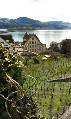 Rapperswil Switzerland, town of roses