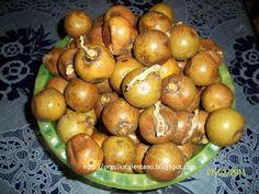 Coyoles, mmmm.  Fruto de los cocos, con chile y limón, o en miel ¡ricos!
