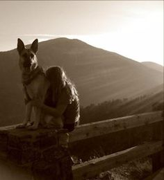 German Shepherd- a girls bestfriend =] my best friend growing up was a fearless shepherd named Keyote.  That dog was unconditional love at its finest.  That kind of love saved my life <3