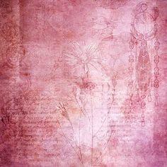 Vintage, Texture, Scrapbook, Pink