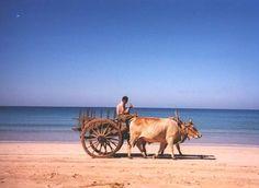 Ngapali Beach, Burma.