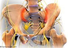 Sacroiliac Joint Anatomy and Dysfunction