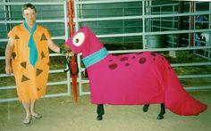 Fred Flintstone & Dino