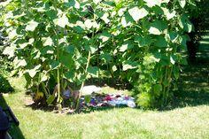 Bring Blessing: Summer Sunflower House