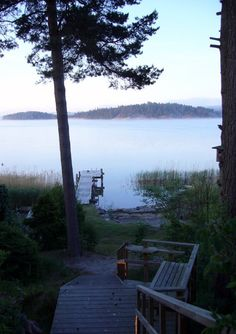 fog on the lake in early morning