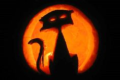 Patterns of cat carved into a Halloween Pumpkin. A huge collection of samples. Cat Pumpkin Carving, Halloween Pumpkin Stencils, Disney Pumpkin Carving, Pumpkin Carving Patterns, Halloween Pumpkins, Pumpkin Carver, Ghost Cat, Halloween Cat, Vintage Halloween