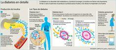 #Infografía sobre la #diábetes en detalle...