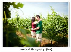 North Fork Engagement Wedding Photography, NY, NYC, CT, Long Island Photographer, Connecticut New York Vineyard Photos, Osprey's Dominion Vineyards