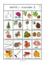 Woordenblad Herfst 2 Pre School, Fall, Autumn, Seasons, Character, Dutch, Stage, Marketing, Education