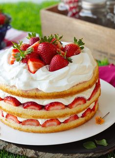 Three layers of soft and plush vanilla cake, infused with flavorful strawberry juice, topped with heaps of glazed fresh strawberries and swoops of thickened whipped cream that won't weep on you. Strawberry Cream Cakes, Strawberry Filling, Strawberries And Cream, Strawberry Juice, Strawberry Shortcake, Strawberry Angel Food Cake, Strawberry Cake Recipes, Food Cakes, Cupcake Cakes