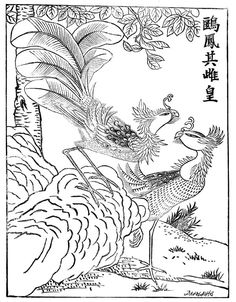 mythical creatures the fung hwang chinese phoenix colouring pages for mythical creatures good