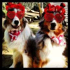 Tully Mars & Jimmy wish you a Happy Valentines Day!
