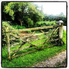 My gate.