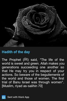 Hadith of the day Prophet Muhammad Quotes, Hadith Quotes, Muslim Quotes, Religious Quotes, Quran Quotes, Allah, Islam Hadith, Islam Quran, Islamic Inspirational Quotes