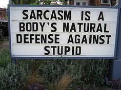 sarcasm.....THANK YOU