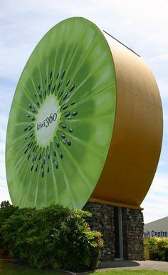 Kiwi 360 green - NZ
