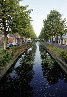 De Vliet is het kloppend hart van Rijnsburg. Rijnsburg is destijds ontstaan langs de Vliet. Eeuwenlang werden via de Vliet goederen af- en aangevoerd. Langs de Vliet Noordzijde als mede de Zuidzijde staan nog enkele fraaie gerestaureerde woningen. De Vliet zelf werd in de jaren 80 gerestaureerd.   De Koestraat is een van de oudste straten van Rijnsburg.