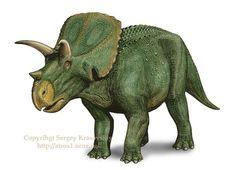Arrhinoceratops Facts: Arrhinoceratops (Sergey Krasovskiy)