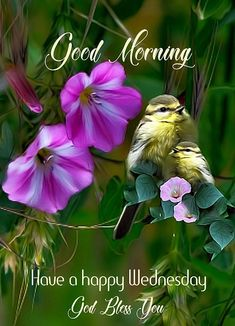 Have a happy wednesday Happy Day Quotes, Happy Wednesday Quotes, Good Morning Wednesday, Good Day Quotes, Good Morning Quotes, Daily Scripture, Daily Devotional, Bible Verses, Good Morning Messages