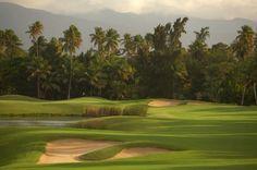 Rewarding Their Commitment To Environmental Conservation Bahia Beach Resort Golf Club Has Received