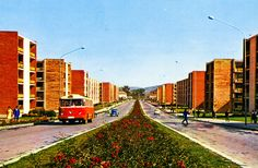 1968 card from Romania, Pitesti, featuring Volga / Во́лга, MOSKVITCH / Москвич and a wonderful bus 70s Aesthetic, Small World, Sidewalk, Anna, Europe, History, Tv, Photos, Nostalgia