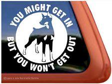 DOBERMAN FUNNY GUARD DOG High Quality Auto Car Truck Window Decal Sticker