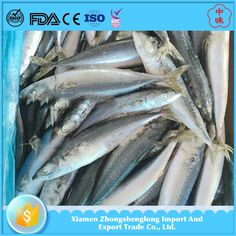 New Landing Light Caught Frozen Pacific Mackerel Seafood Fish Supplied.