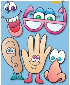 """Nursery rhyme of the 5 senses"" - Flores Five Senses Preschool, My Five Senses, Senses Activities, Preschool Activities, Teaching Kids, Kids Learning, Body Parts Preschool, English Activities, School Decorations"