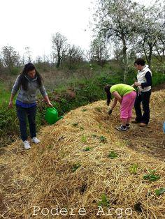 Costruisci il tuo orto...sinergico ! Corso base di agricoltura sinergica al Podere Argo 13 e 14 maggio  #corso #ortosinergico #agricolturasinergica #emilia hazelip