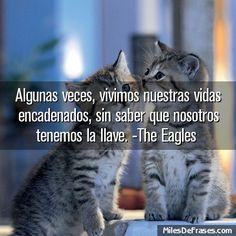 Algunas veces vivimos nuestras vidas encadenados sin saber que nosotros tenemos la llave. -The Eagles