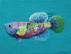 fish by kimikahara, via Flickr