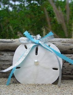 Sand Dollar Christmas Ornament by sandnsurfcreations on Etsy