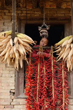 Daydreams . Kathmandu Valley