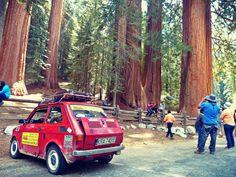 Maluchem dookoła USA część 19: Sequoia National Park  fiat126p maluch