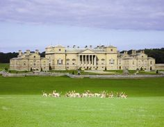 Holkham Hall — North Norfolk, England