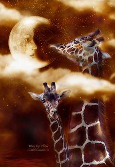 tableaux art digital de carol cavalaris - Page 12 Beautiful Creatures, Animals Beautiful, Baby Animals, Cute Animals, Giraffe Art, Giraffe Decor, Creation Photo, Fauna, Wildlife Art