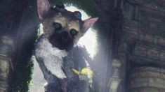 The Last Guardian: Trico is Absolutely Adorable - IGN Plays Live - http://gamesitereviews.com/the-last-guardian-trico-is-absolutely-adorable-ign-plays-live/