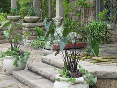 I love this sphinx from Martha Stewart's house in Maine.