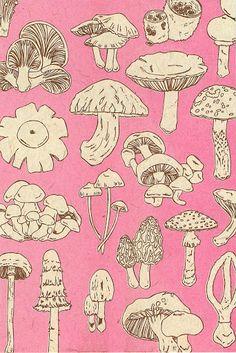 植物イラスト Under Wear q v c underwear Botanical Illustration, Illustration Art, Mushroom Art, Poster Prints, Art Prints, Hippie Art, Photo Wall Collage, Arte Floral, Psychedelic Art