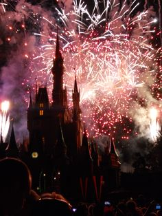 The finale of WISHES at Cinderella's Castle at Walt Disney World.  Pure magic!