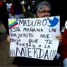 """MADURO. This morning a little bird said for you to go to hell."" | @InfoVzlacom: Mejor expresado IMPOSIBLE.@MiguelitoCanta pic.twitter.com/qxKePcYl18 #MaduroGenocidaDeVzla #13MSacaLaBasuraDeVenezuela"