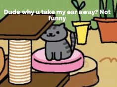 Neko atsume memes that will make your day by warrior cat lover special thanks to font candy for helping place words on the photo.