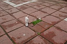 """Isaac Cordal """"Cement Eclipses."""""""