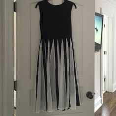 Black and white pleated dress Beautiful black and white dress. Top is fitted and bottom falls softly with black and white pleats. Red Gold, Color Pop, Bodice, Black And White, Skirts, White Dress, Costume, Beautiful, Tops
